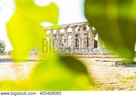 View Of The Temple Of Athena In Paestum, Italy.