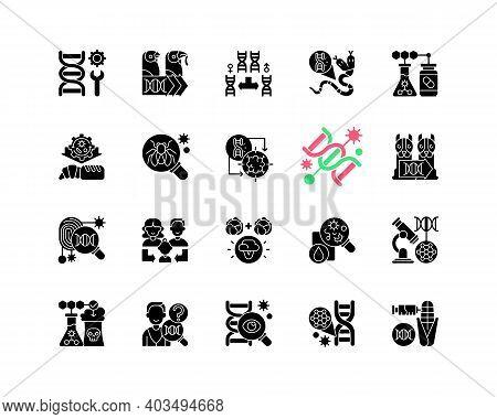 Genetic Engineering Black Glyph Icons Set On White Space. Chromosome Division. Animal Mutation. Medi