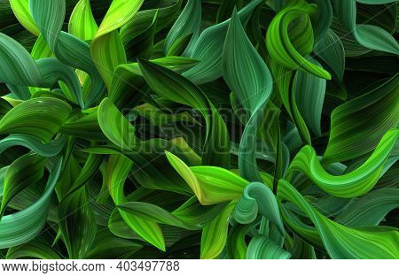 Plant Vines Green Growing Twisting Twisted Leaves, 3d Illustration, Horizontal Background