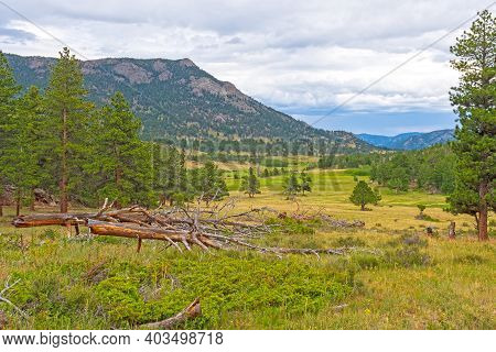 Upper Beaver Meadows In The Mountains Of Rocky Mountain National Park In Colorado