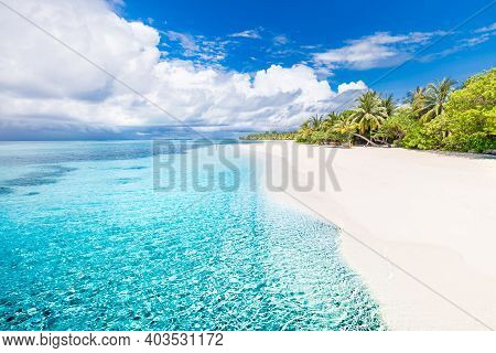 Amazing Nature Beach With Palm Trees And Moody Sky. Summer Vacation Travel Holiday Background Concep