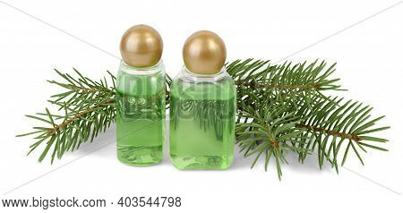 Two Bottles Of Spruce Essential Oil And Fir Branches Behind On Isolated On White Background.