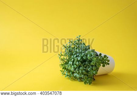 Copy Space, A Picture Of Flowers With Green Leaves On A Light Yellow Background. Ideal For Many Topi