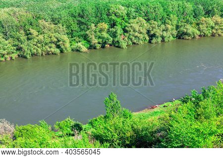 Aerial View Of Green Forest And River . Riverside In The Springtime . Nature Drone Shot