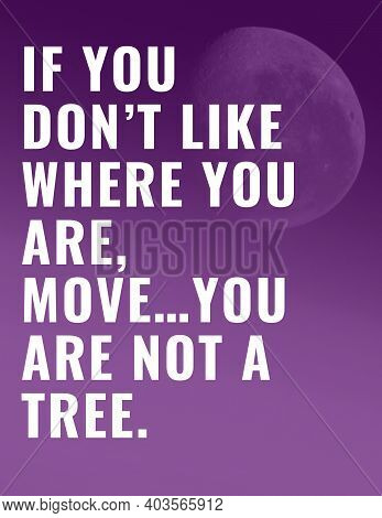 If You Don't Like Where You Are, Move...you Are Not A Tree.