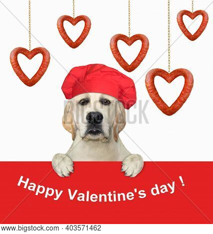 A Dog In A Red Chef Hat Is Near A Heart Shaped Hanging Sausages. Happy Valentine's Day. White Backgr