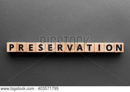 Preservation - Word From Wooden Blocks With Letters, Process That Keeps Organic Things From Decompos