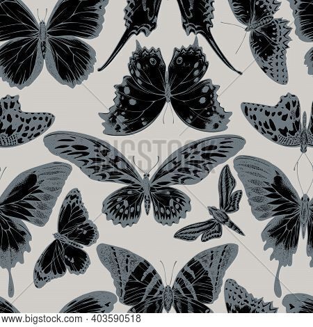 Seamless Pattern With Hand Drawn Stylized Giant Swordtail, Lemon Butterfly, Red Lacewing, African Gi