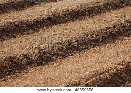 Agricultural field ploughed