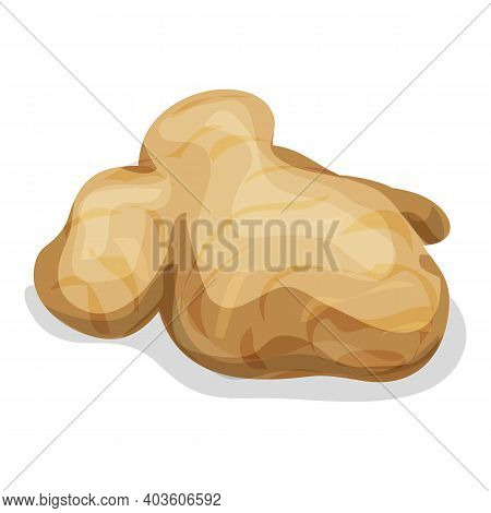 Ginger Root Icon. Cartoon Of Ginger Root Vector Icon For Web Design Isolated On White Background