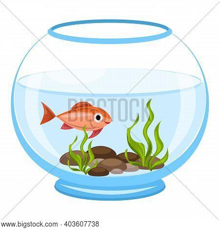 Aquarium Algae Fish Icon. Cartoon Of Aquarium Algae Fish Vector Icon For Web Design Isolated On Whit
