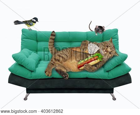 A Beige Lazy Cat Is Lying On A Green Divan And Eating A Hot Dog And A An Ice Cream Cone. White Backg