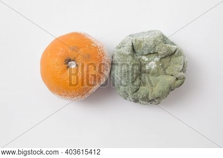 Spoiled Moldy Rotten Tangerine On White Background. Isolated.