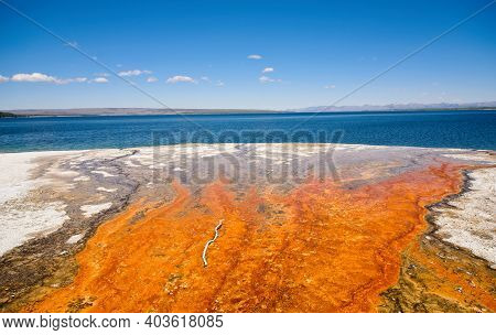 Colorful Runoff From A Thermal Spring Into Yellowstone Lake At Yellowstone National Park