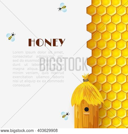 Honey Background With Hexagon Honeycomb Beehive And Bumblebees Insects Vector Illustration