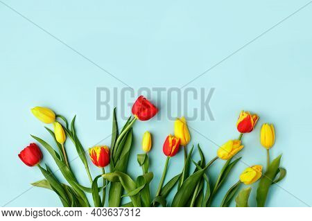 Yellow Red  Tulip Flowers Bouquet On Blue Background, Copy Space. Banner For Seasonal Holiday, Sprin