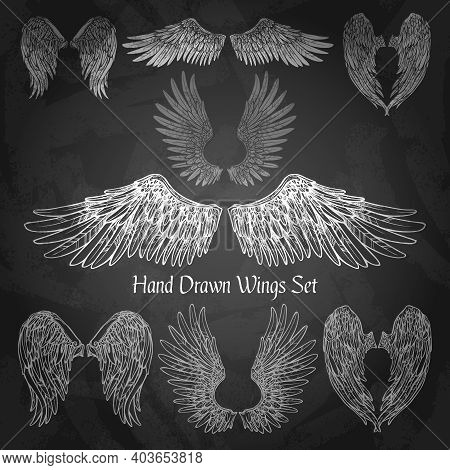 Hand Drawn Wings Set On Chalk Board Isolated Vector Illustration