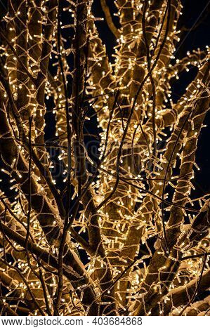 A Close-up Of The Tree Is Entwined With A Luminous Yellow Garland. Decoration For Christmas.