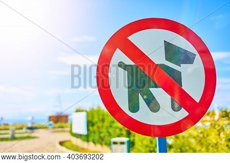 Symbol, Do Not Walk Dogs Sign In Public Park. Hounds Are Not Allowed. The Ban On The Walking Of Pupp