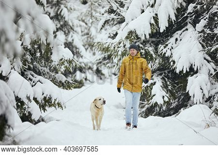 Front View Of Young Man With Dog In Winter Nature. Pet Owner With His Labrador Retriever Are Walking