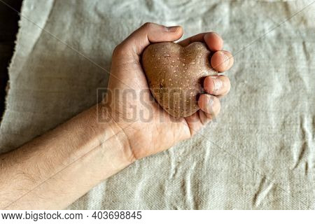 A Man's Hand Holds An Ugly Vegetable, A Heart-shaped Potato On A Background Of Linen Cloth. Square,