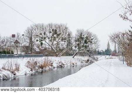 Radunia River In Winter Time In Pruszcz Gdanski, Poland.
