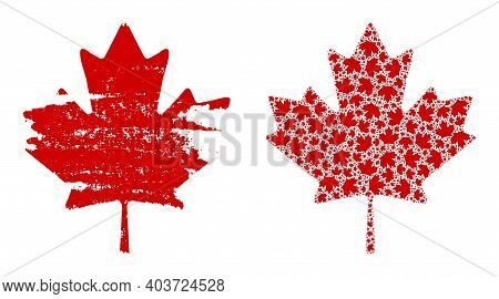 Vector Maple Leaf Fractal Is Done From Randomized Fractal Maple Leaf Pictograms. Scratched Maple Lea