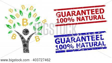 Bitcoin Tree Man Star Pattern And Grunge Guaranteed 100 Percents Natural Stamps. Red And Blue Waterm