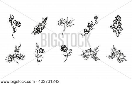 Doodle Simple Vector Collection Of 10 Hand-drawn Roses. Big Collection Of 10 Hand-drawn Roses. Big F
