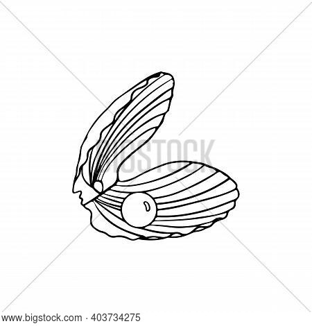 Sea Shell With Pearl Icon. Outline Hand Draw Illustration Of Sea Shell With Pearl Vector Icon For We