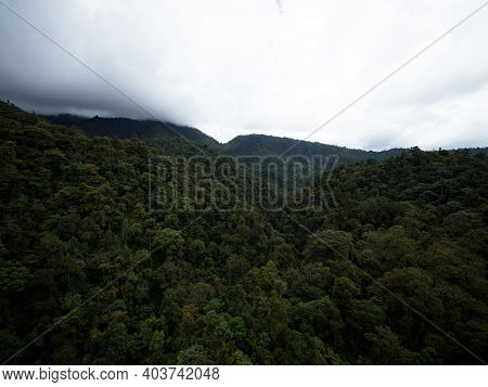 Panorama Treetop View Of Green Nature Hills In Tropical Rain Cloud Forest Mindo Valley Jungle Nambil