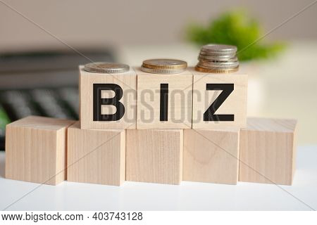 Biz - Text In Wooden Building Blocks, Calculator And Coins Backgrounds.