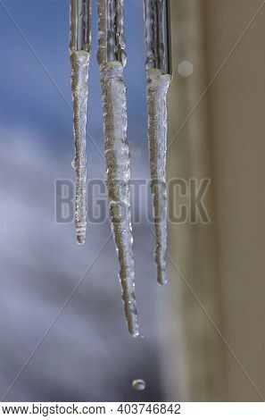 Icicles Hanging Down And Dripping With Water Drop