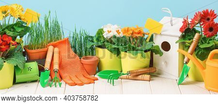Gardening Tools And Flower Pots On The Terrace In The Garden. Spring