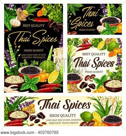 Thai And Herb Seasonings, Cooking Condiments And Food Ingredients, Vector. Thai Cuisine Herbal Ginge