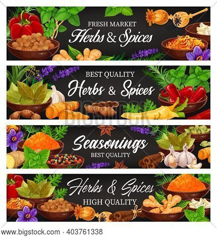 Herbs And , Fresh Food Seasoning And Condiment Cartoon Vector Banners. Leaves Of Basil, Mint, Thyme,