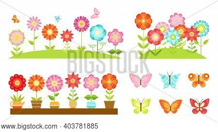 Flat Garden Flower Borders. Wild Flowers, Blooming Plants In Pots. Colorful Butterflies, Spring Summ