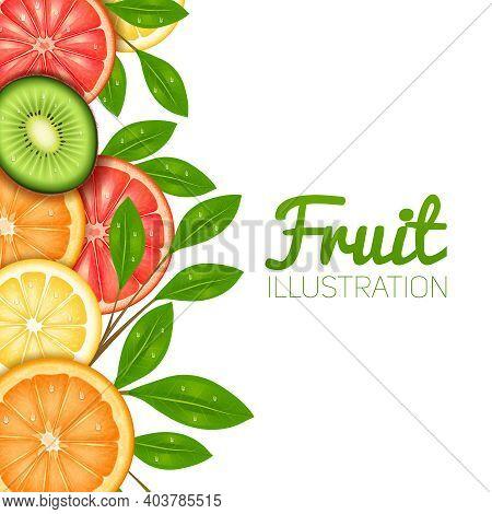 Summer Fruit  Poster With Cut Lemon Orange Grapefruit And Kiwi Vector Illustration