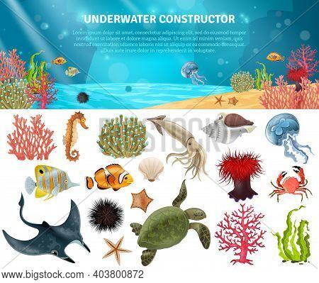 Sea Life Animals Plants And Landscape Cartoon Icons Constructor Set Vector Illustration