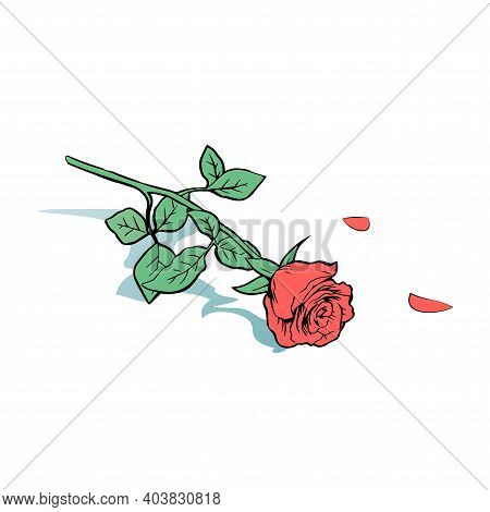 Thrown Red Rose On The Floor. A Rejected Gift And Unhappy Love. Vector Isolated Pop Art Illustration