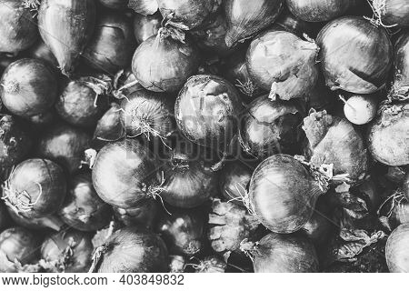 Vintage Black And White Shot Of A Pile Of Onions
