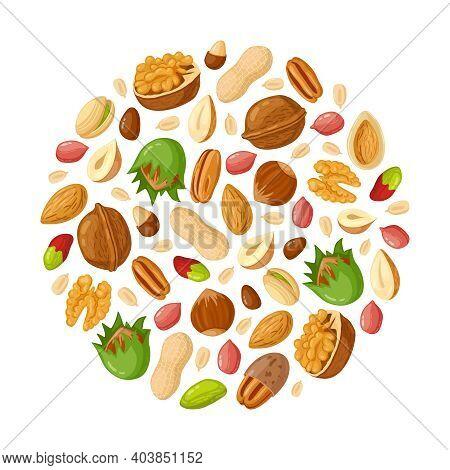Cartoon Seeds And Nuts. Almond, Peanut, Cashew, Sunflower Seeds, Hazelnut And Pistachio. Nut Food Ve