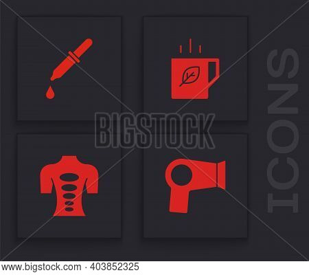 Set Hair Dryer, Pipette, Cup Of Tea And Leaf And Massage Stone Therapy Icon. Vector