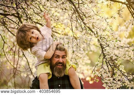 Springtime. Hipster Piggybacking Baby. Bearded Brutal Man Good Father. Dad And Son. Best Dad Ever. F