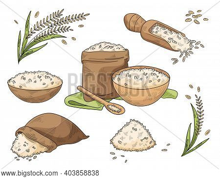 Rice Crop And Food Made From It. Rice Porridge In A Pot And Bowl, Scattered Rice Grains In A Bag And