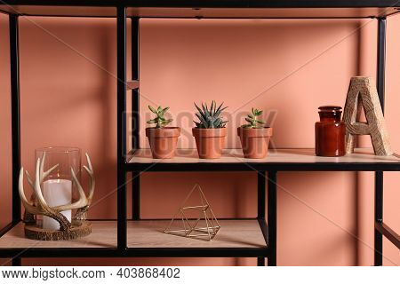 Shelving With Different Decor And Houseplants Near Coral Wall. Interior Design
