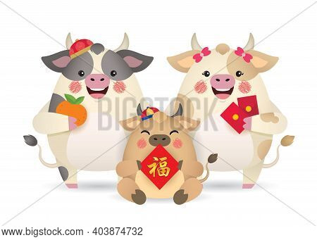 Cute Cartoon Cow Family Holding Tangerine, Red Packet And Chinese Couplet Isolated On White Backgrou