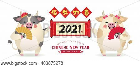Cute Cartoon Cow Holding Chinese Scroll And Hand Fan With Couplet Isolated On White Background. 2021