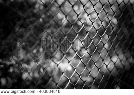 Dramatic Black And White Shot From A Fence - Close Up Shot From A Fence In Black And White - Unknown
