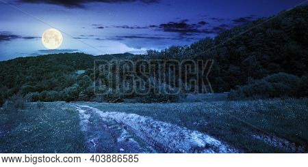 Dirt Road Through Forested Countryside At Night. Beautiful Summer Rural Landscape In Mountains. Adve